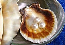 Perlen symbolisieren Karma-Transformation per Horoskop